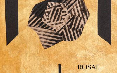 Rosae Rosarum Rosis di Anna Pennati