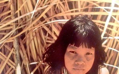 Fulvio Roiter – Amazzonia